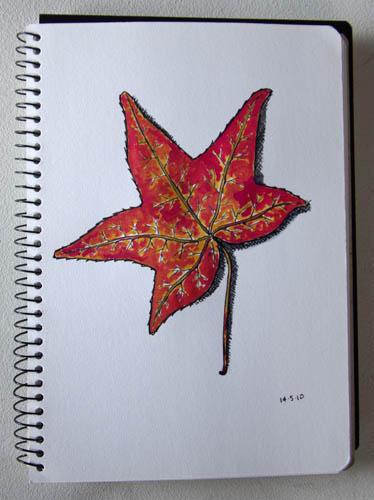 sketchsunday028