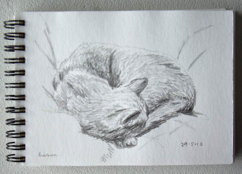 sketchsunday029